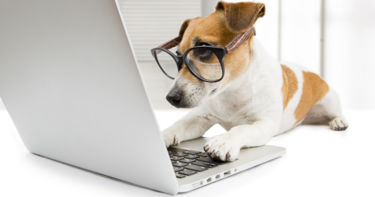 Online marketing solution